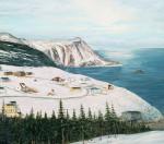 Capelin Cove